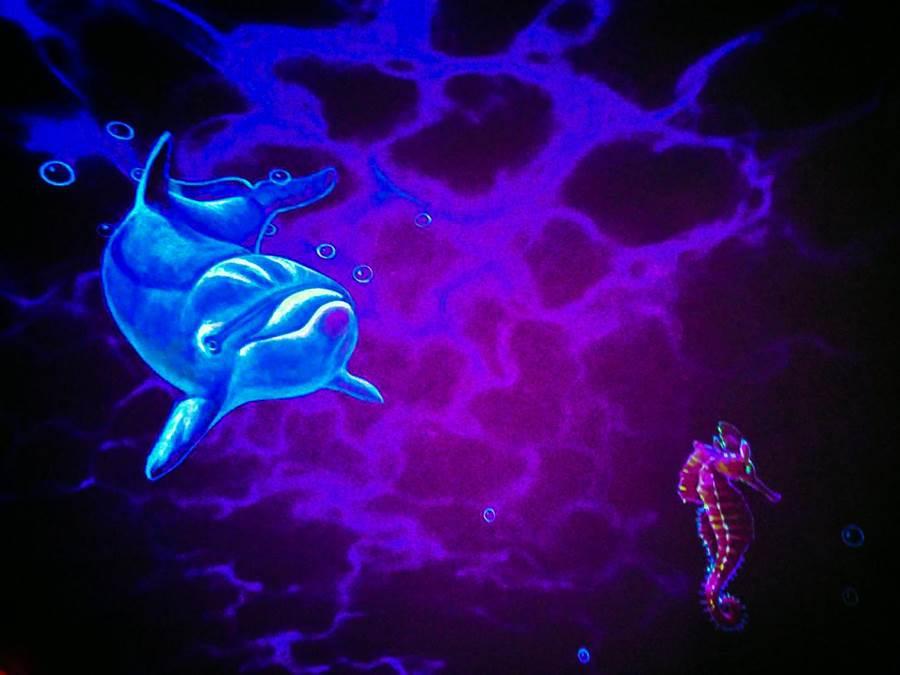 蘋果屋內設計手繪螢光畫,入夜關燈後可愛海豚躍然牆上。(王文吉翻攝)