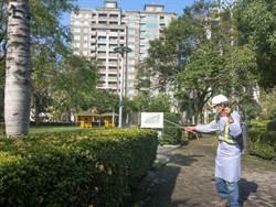 小心臭屁蟲!中市府修剪行道樹、化學防治雙管齊下