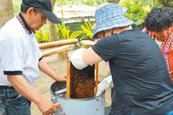賽夏族養蜂有成 產出優質森林蜜
