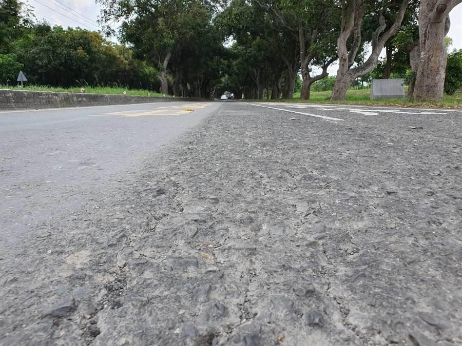義士路路面損壞嚴重引發民怨,5月2日起將進行道路優質化工程。(莊曜聰攝)