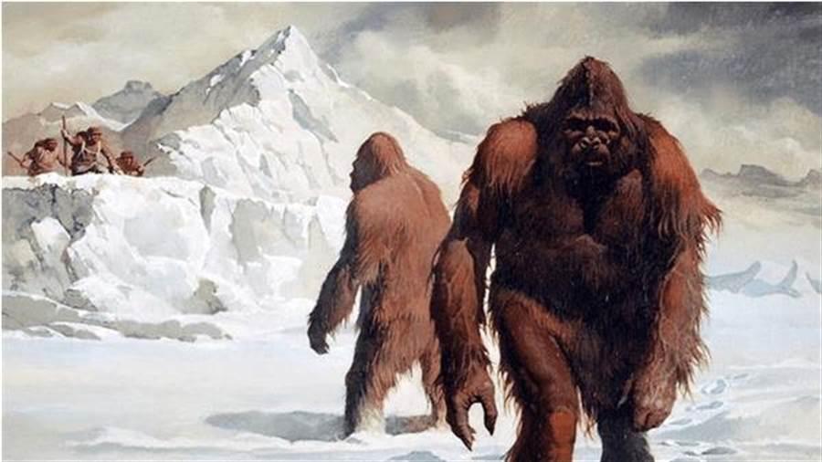 印度陸軍表示,他們在馬卡魯峰附近發現雪人的足跡。(圖/網路)