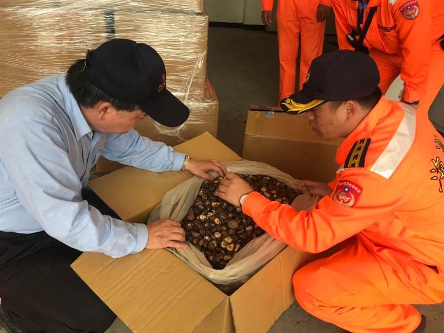 金門岸巡連2天查獲疑似意圖轉運赴台的陸菇,總重計466.67公斤。(岸巡提供)