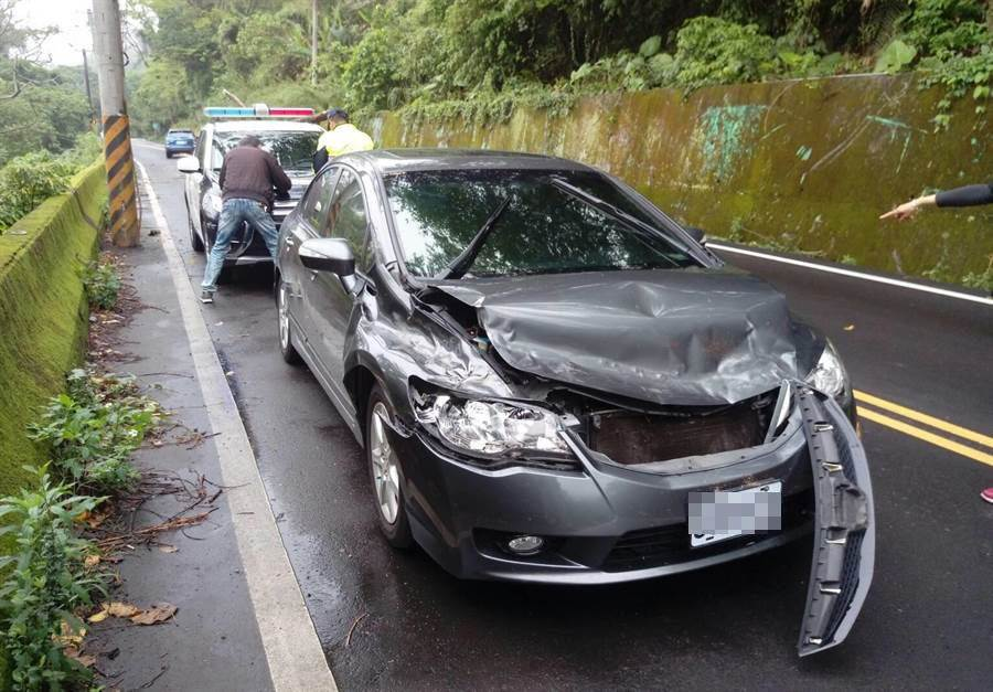 陳男日前開車行經台中市東崎路,邊坡上的1棵朽木突然從他面前倒下,不偏不倚砸中車頭。(讀者提供)