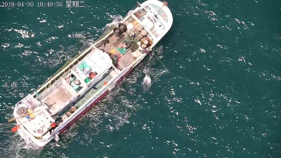 無人機在海面上追緝的獨家查緝畫面。(海巡署提供)