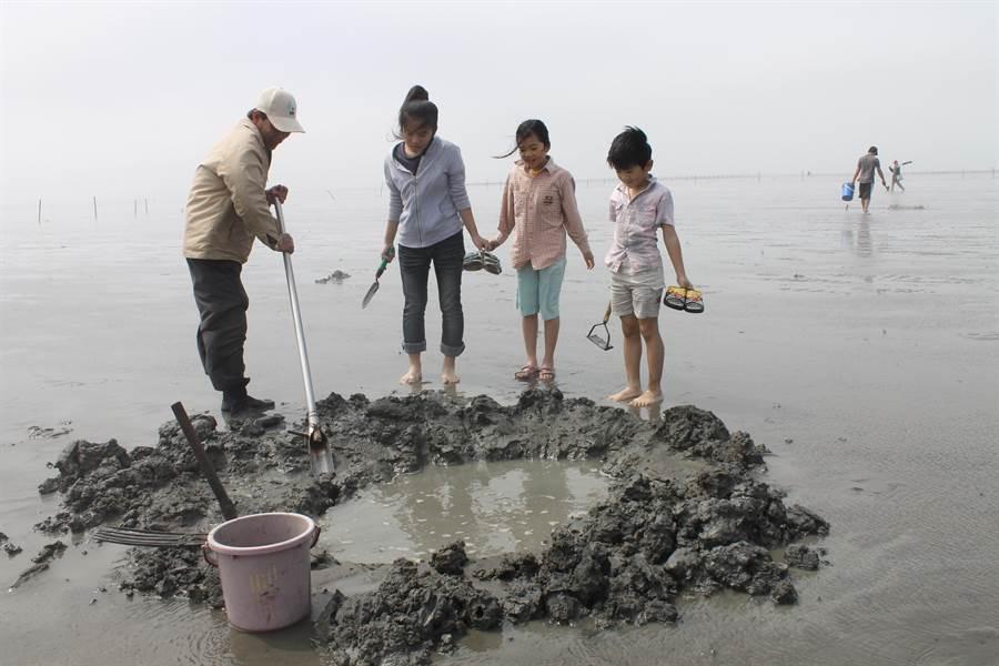 彰化海岸擁有世界級泥質濕地,潮間帶孕育多樣的生態。(吳敏菁攝)