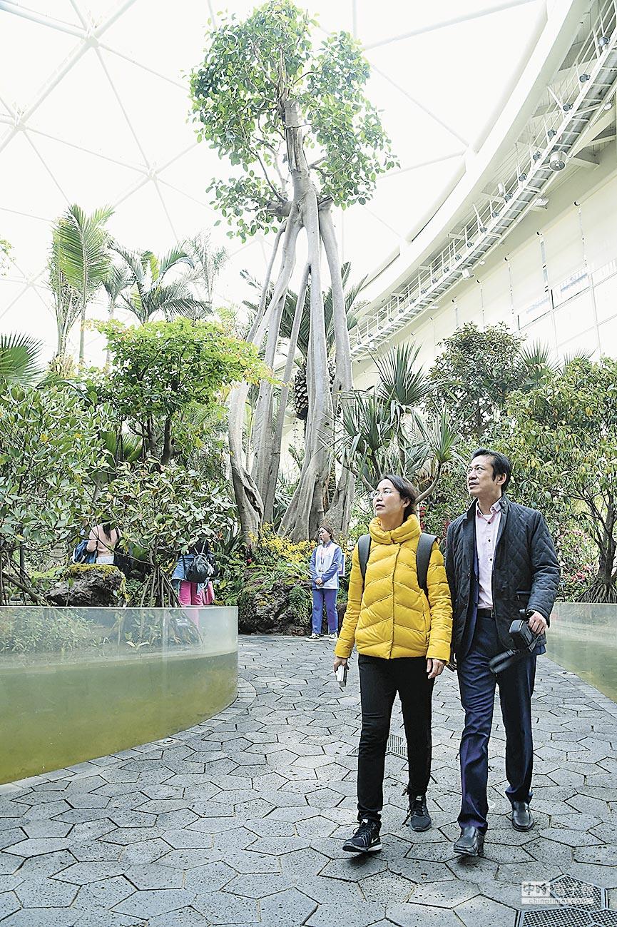 遊客在世園會植物館中參觀。(新華社資料照片)