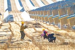 太陽能產業回春 陸企紛擴產能
