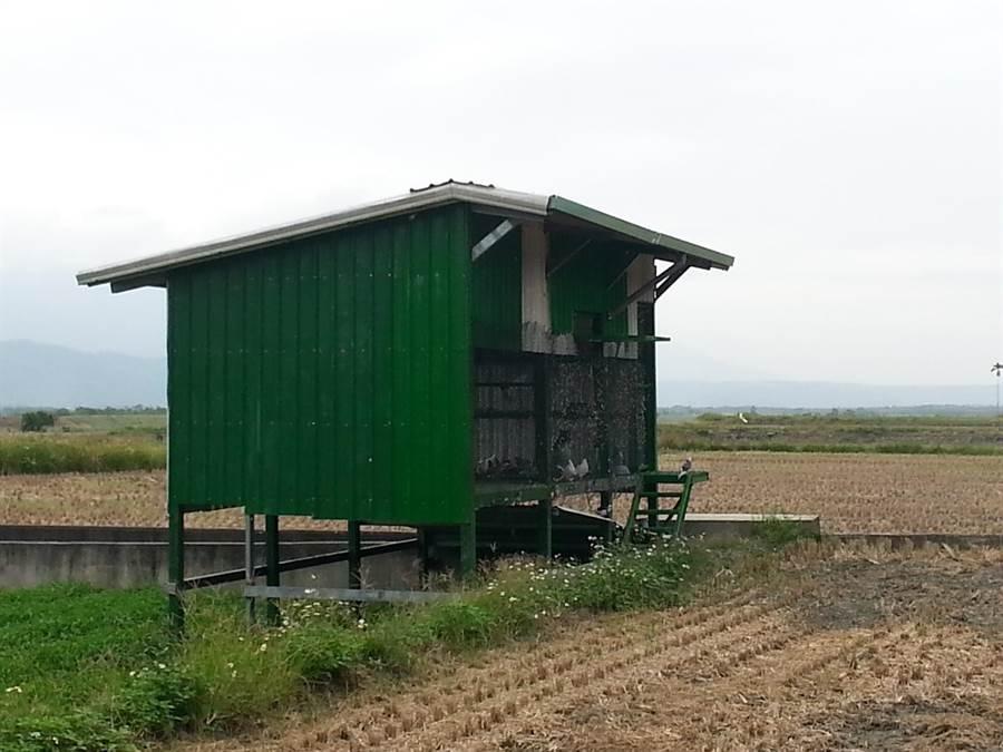 花蓮縣不少農牧用地未經申請自行興建建物。(縣府地政處提供)