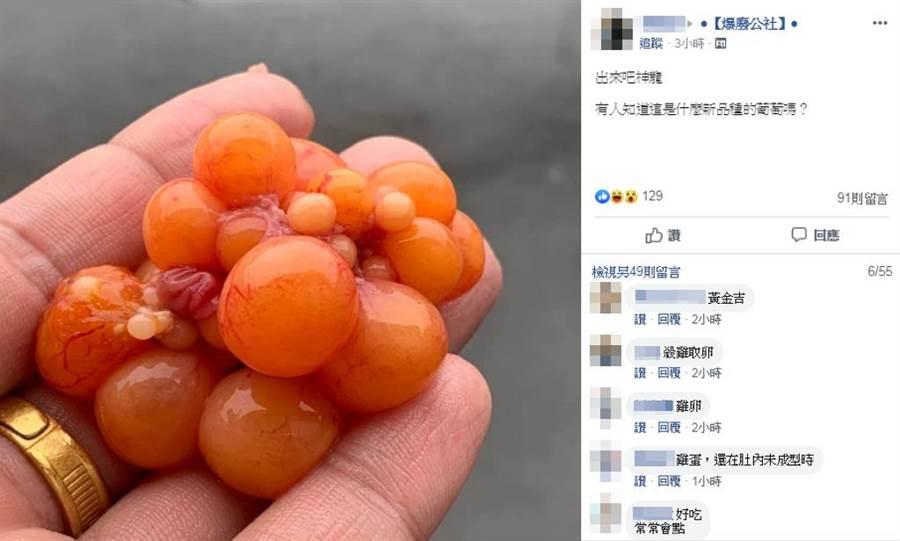 「血絲葡萄」其實是母雞體內未成熟的雞蛋。(圖/ 翻攝自臉書@爆廢公社)