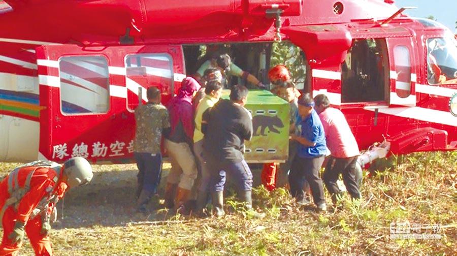 內政部空勤總隊黑鷹直升機上月30日運送「南安小熊」回家野放,卻引發保育爭議。(取自空勤總隊網站)