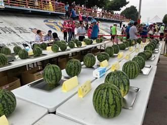 龍井西瓜產業文化節  推廣在地美味沁涼西瓜
