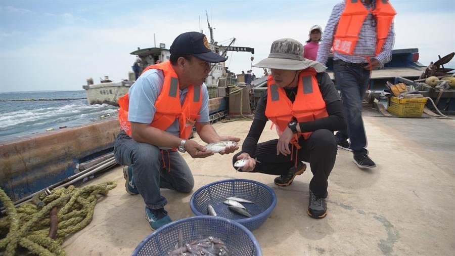 新竹市長林智堅(右)5日一早就跟明發定置漁場老闆發哥,一起出海捕魚去。(陳育賢翻攝)