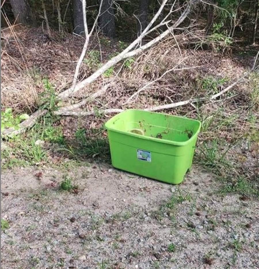 中午高溫下的綠盒子 讓大家崩潰了。(翻攝自 rescuedogsrocknyc IG)