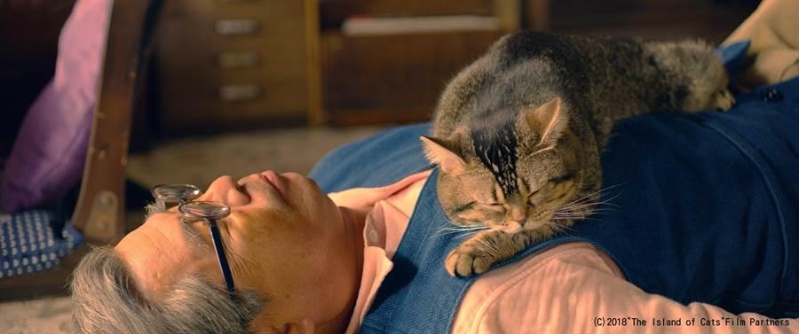 天才貓「培根」從《爺爺與喵》上百隻貓中脫穎而出,片中與演員精彩互動,令導演激賞。(天馬行空提供)