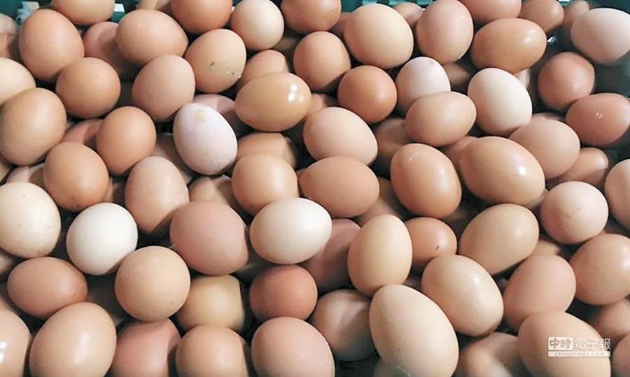 雞蛋示意圖。(圖/本報資料照片)
