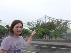長春公園電纜線有礙觀瞻 地方盼移除