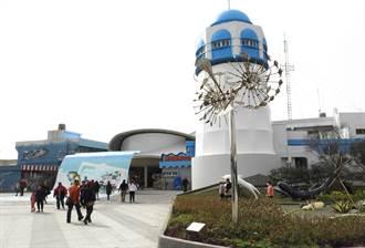 梧棲漁港建造地中海風情提供熱門打卡勝地 消費有保障