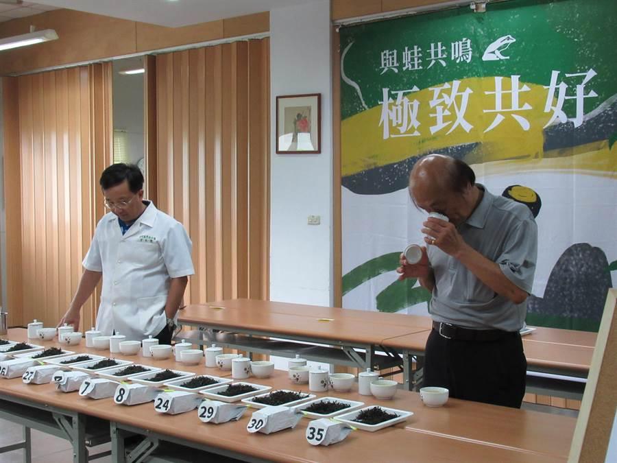 2019有機包種茶分級評選會8日開放報名。(譚宇哲翻攝)