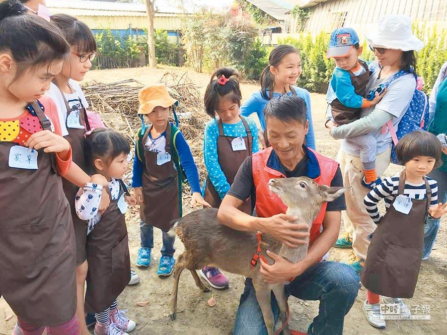 深入小鎮體驗在地文化,近年很受國人喜愛,圖為台南佳里漳州社區推小旅行,遊客體驗當一日鹿農,還有水田種稻、拔蘿蔔等活動,相當豐富。(勞動部勞動力發展署雲嘉南分署提供)