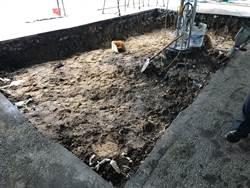 聖薩爾瓦多城考古開挖 林右昌盼歷史再現