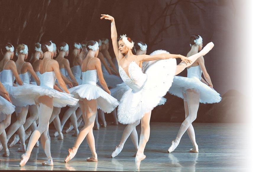 暌違7年,俄國馬林斯基劇院芭蕾舞團與交響樂團將再來台,演出全本三幕《天鵝湖》。(牛耳藝術提供)