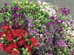 母親節送花 報價知多少?康乃馨、玫瑰皆適宜