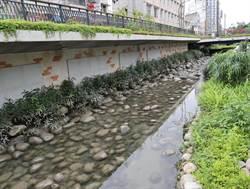葫蘆墩圳掀蓋反變「臭水溝」 水利局急救親水河岸