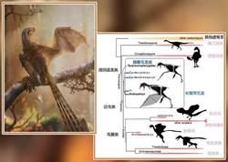 大陸發現1.6億年前侏羅紀具膜質翅膀恐龍「長臂渾元龍」