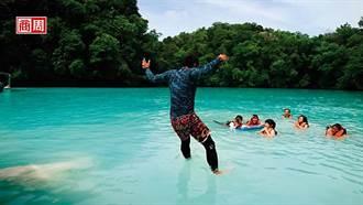 與黃金水母溫柔共游 帛琉玩生態
