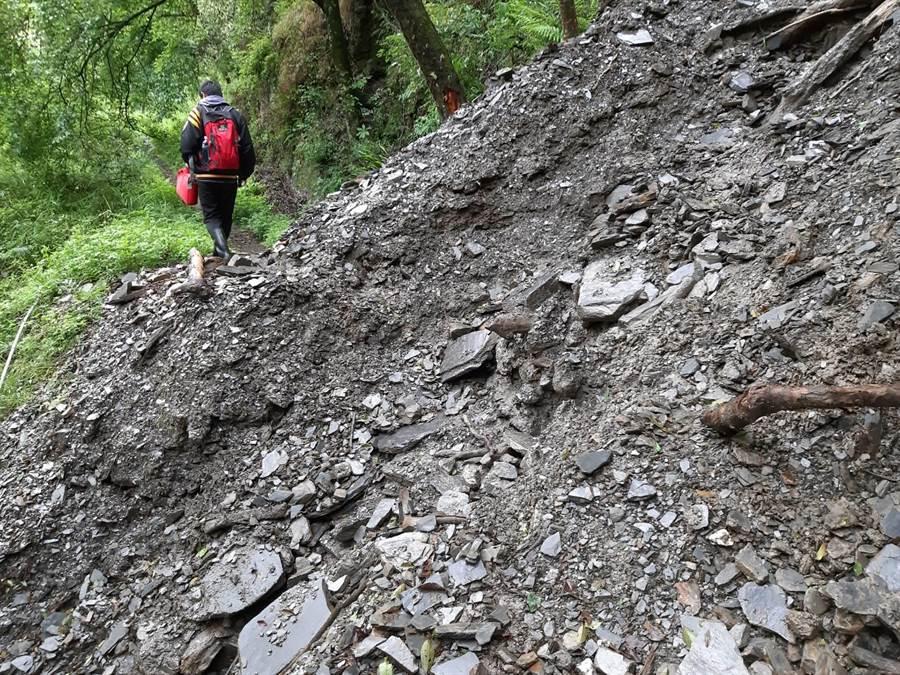 雪霸國家公園區內大小劍線聯外道路松茂林道,因連日大雨沖刷有多處土石崩塌,雪霸處即日起公告暫停入園登山。(雪霸處提供)