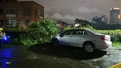 影》撞死人後棄車逃逸  警4小時火速破案