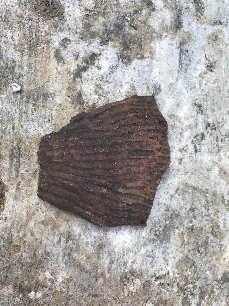 和平島挖出疑似跟十三行遺址一樣出土的粗繩紋陶。(基隆市政府提供)