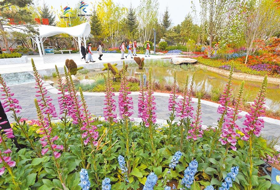 洪秀柱將在12日訪問北京,行程初步規畫將參觀世界園藝博覽會。圖為4月29日,參觀者在北京世園會河北園遊覽。(新華社)