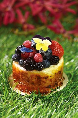 藝創玩味-甜點的藝饗世界:糖果化+餅乾化+套餐化