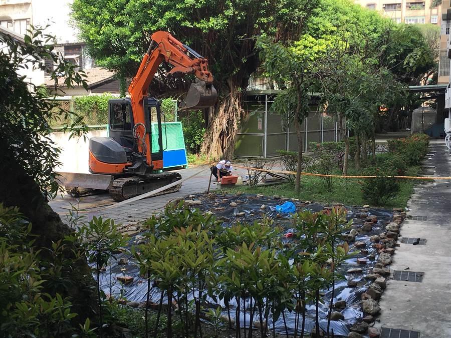龍山國中11日上午進行骸骨挖堀作業。(陳鴻偉翻攝)