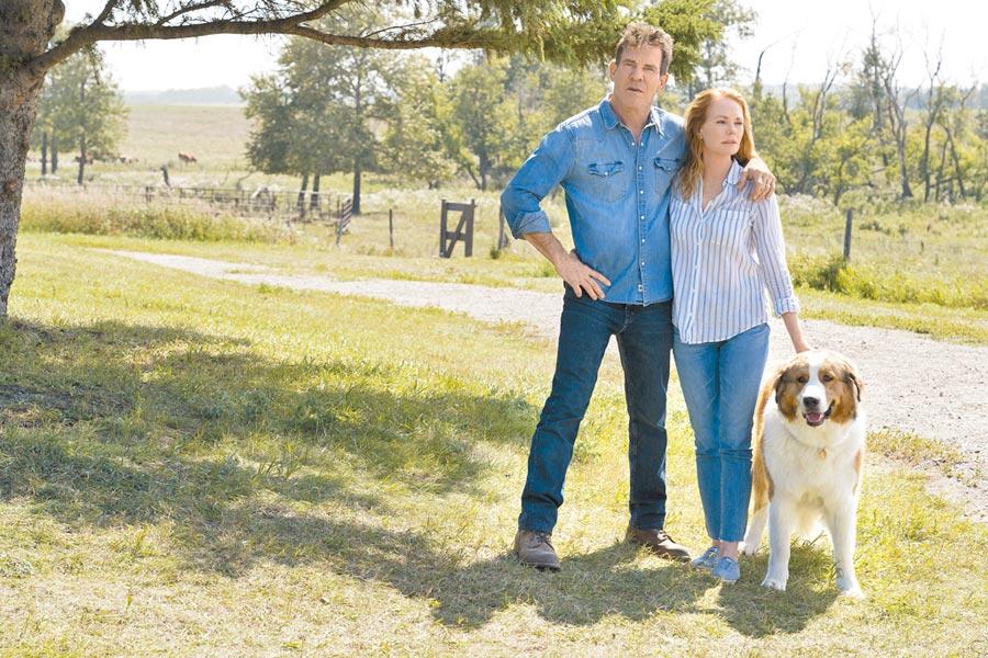 丹尼斯奎德(左)與片中飾演妻子的瑪格海根柏格在片中過著幸福快樂的日子。(UIP提供)