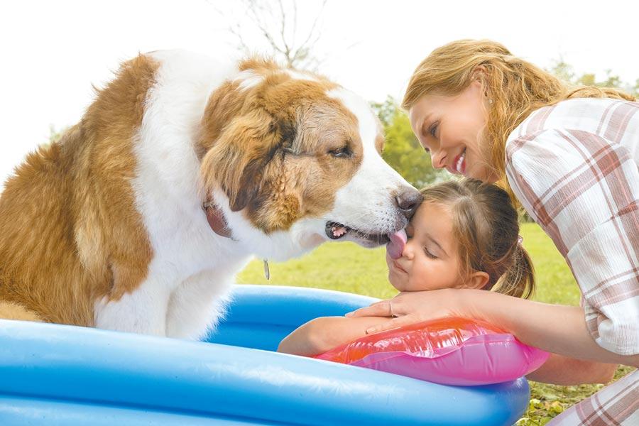 狗狗貝利與女童CJ和劇中母親有親密互動。(UIP提供)