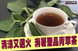 《翻爆旺美食》清涼又退火 消暑聖品青草茶