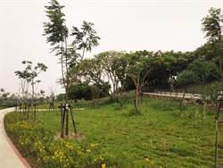 億元打造北港溪魅力河段 高灘地化身後花園