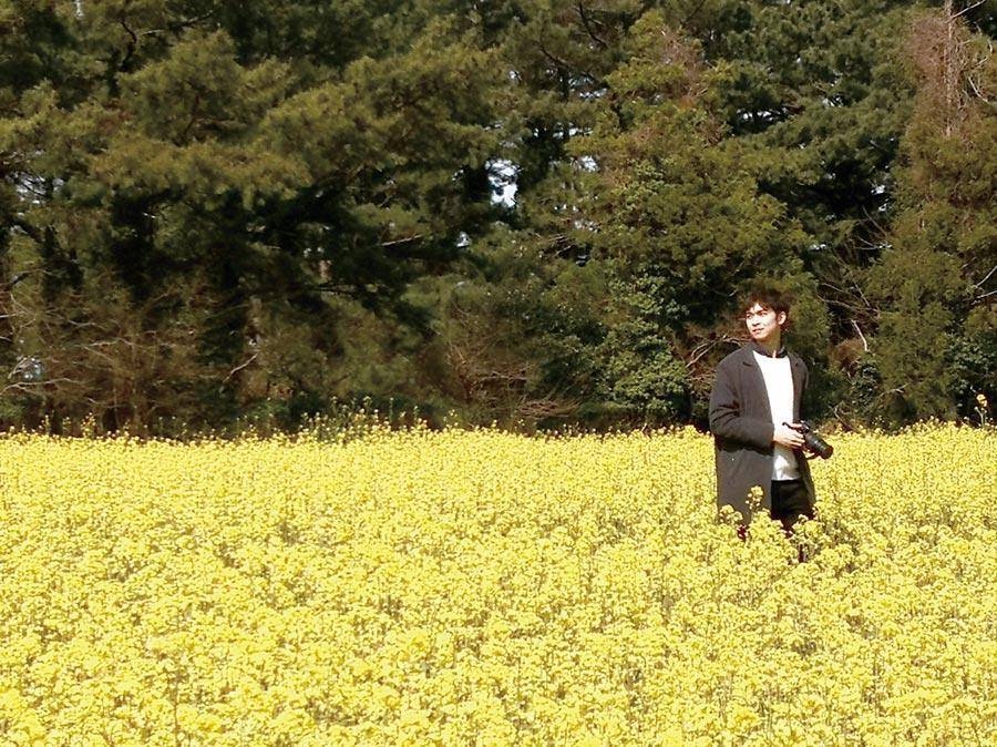 韓國濟州島的油菜花田。圖/遠東航空提供
