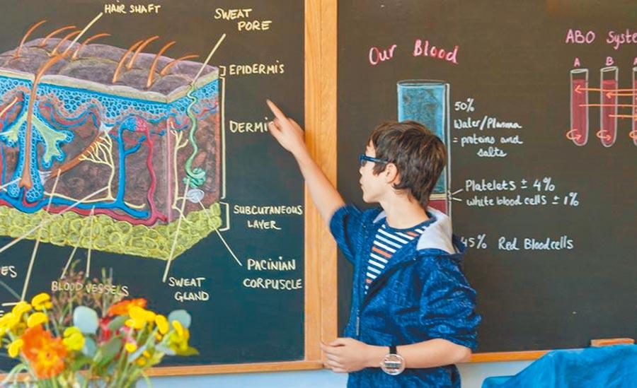 「半島華德福學校」提供一種幾乎「無螢幕」的教育。(摘自矽谷華德福學校官網)