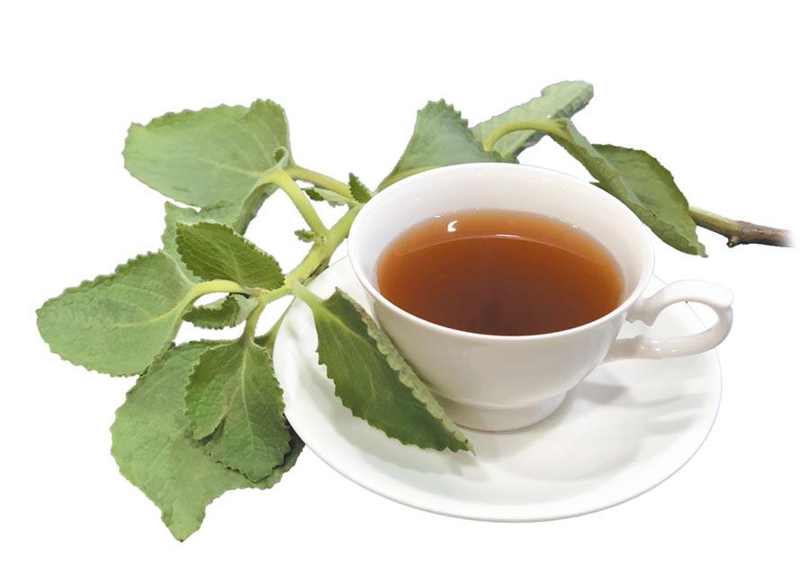 「港都茶站」的生草茶,喝起來有左手香的清香和龍眼的甘甜。(馮惠宜攝)
