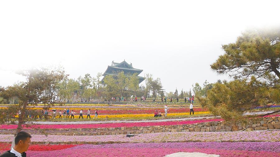 北京世園會內有各種花卉造景,吸引不少遊客駐足。(記者陳柏廷攝)