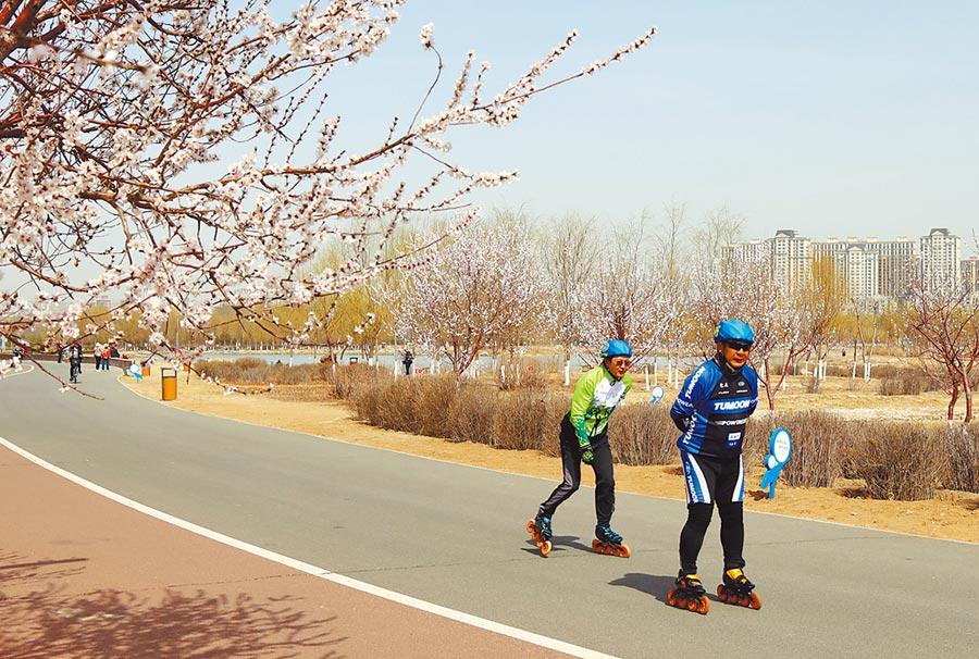 內蒙包頭市綠植長廊串起一個個公園廣場。(新華社)