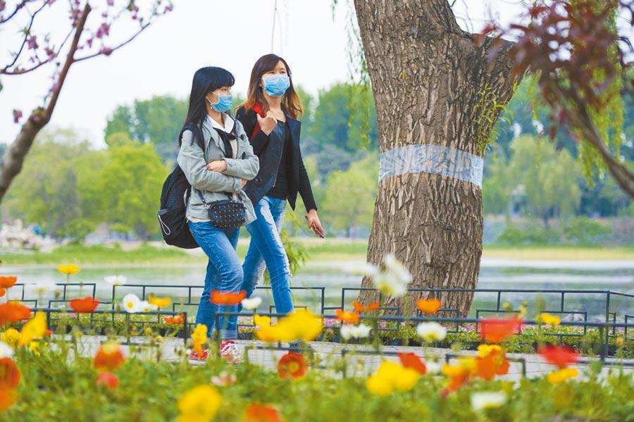 春夏交替,午間及午後是花粉飄散濃度最高的時候,哮喘病人要減少外出。(中新社資料照片)