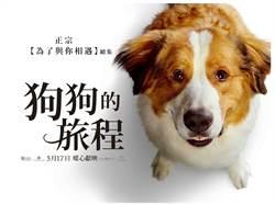 柏萊富與《狗狗的旅程》攜手抽天然狗糧1年份