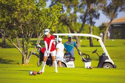 高爾夫球證行情Down 年跌近1成