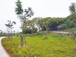 北港溪高灘地 變身後花園