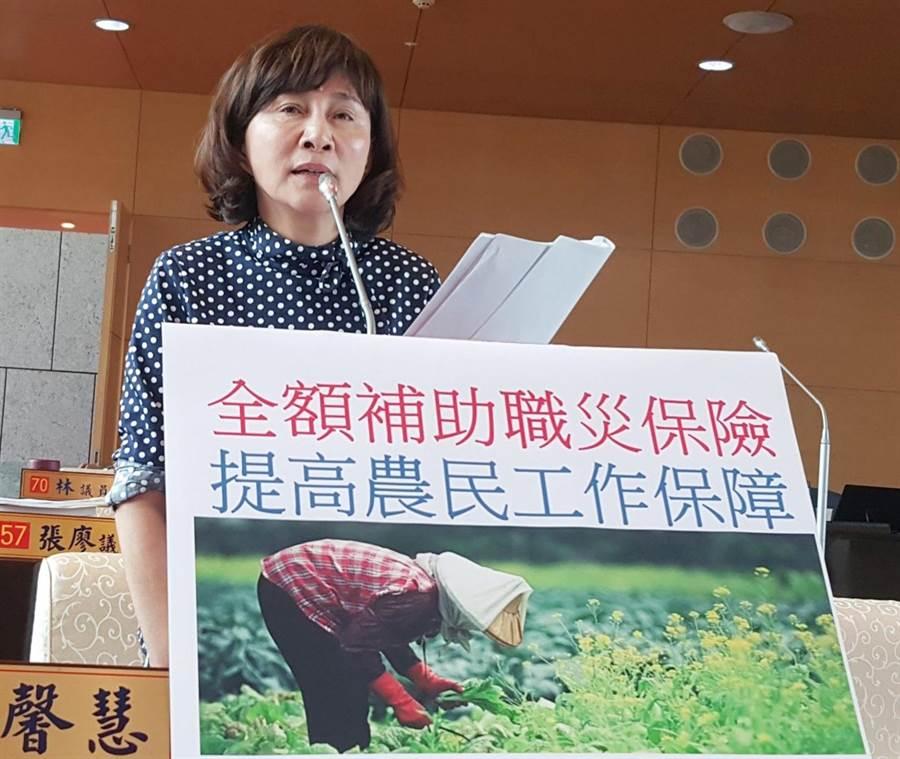 市議員黃馨慧指農民職災投保率一成四偏低,要求市府能夠補助全額保費。(陳世宗攝)