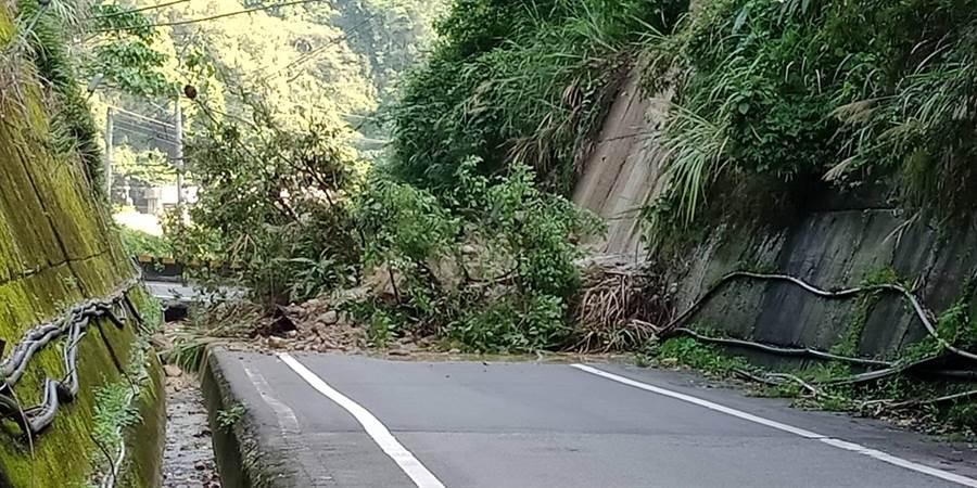 中橫23公里天輪東卯橋分道處由天輪往和平方向,13日上午發生土石夾雜樹木砃塌情形。(陳淑娥翻攝)